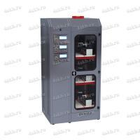 Зарядно-десульфатирующий шкаф для АКБ  Светоч-03-03.40B.50A.R18A(250Вт).ЖК